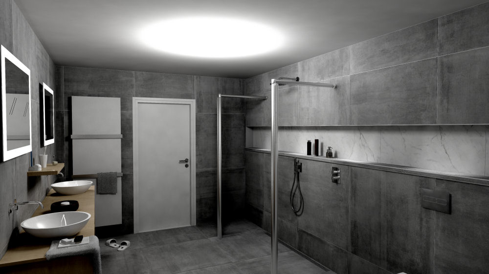 Badkamer toilet of douche vernieuwen badkamerhuis for Ontwerp badkamer 3d